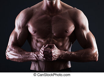 マレ, 提示, 細部, 筋肉, ライト, 筋肉, トルソ