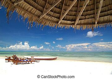 リゾート, 浜, トロピカル