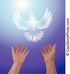 上げられた, 鳩, 白, 飛行, の上, 称賛, 手