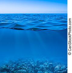 世界, 冷静, ゆとり, 発見された, 水中, 表面, 空, まだ, 海水