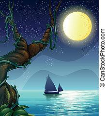 中央, ボート, 航海, 夜