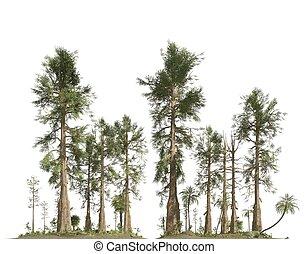 中生代, 森林, 隔離された, イラスト, 時代, 背景, 白, 3d