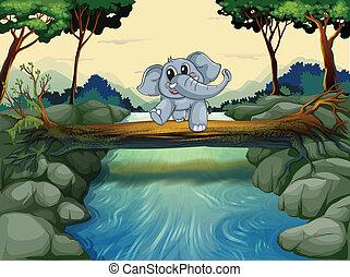 交差, 川, 象