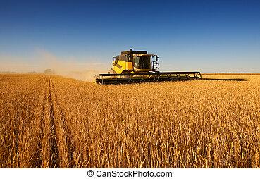 仕事, 収穫