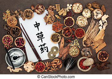 代わりとなる 薬, 中国語