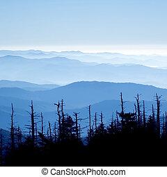 偉人, 煙が多い, 国立公園, 山