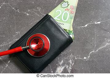 健康診断, 財政