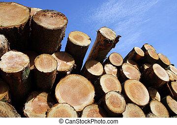 備蓄, 伐採, 材木