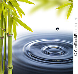 円, 水の生命, まだ, エステ