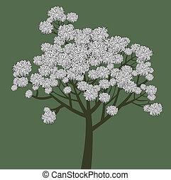 写実的, 木, 若い, ベクトル, 花が咲く, 図画