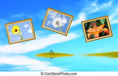 写真, 花, 3