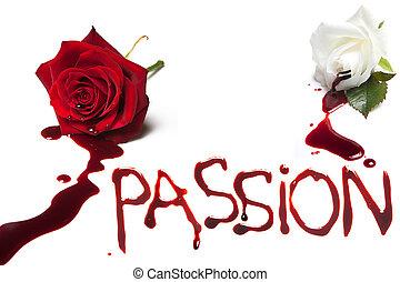 出血, ばら, 情熱