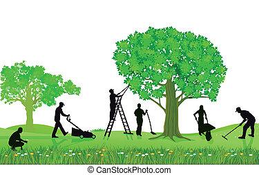 切り取ること, 園芸, 植物