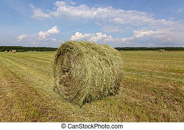 刈られた, grass., hay., 収穫される, rolled-up