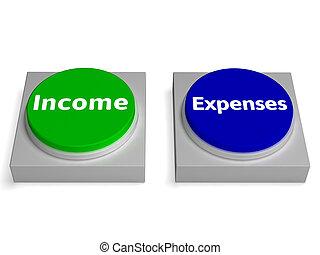 利益, 出費, ボタン, 収入, 会計, ショー