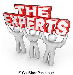 助け, 人々, 専門家, 解決しなさい, 専門家, 問題