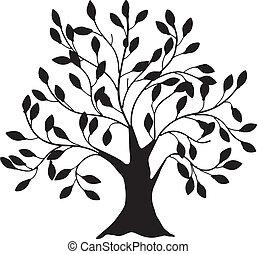 厚く, 木の幹