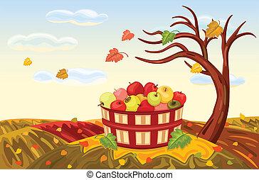 収穫する, 豊富, 秋, アップル
