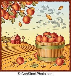 収穫, アップル, 風景