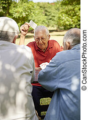 古い, 先輩, 公園, 活動的, カード, グループ, 友人, 遊び