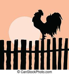 古い, 雄ん鶏, シルエット, フェンス