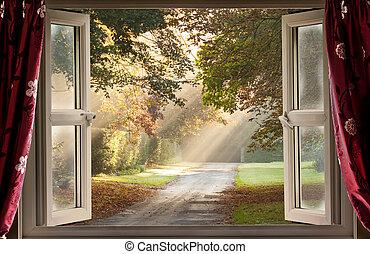 国, 窓, 開いた, に, 光景