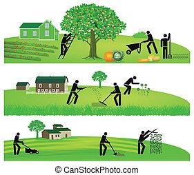 園芸, 収穫する