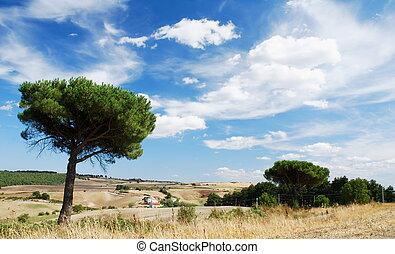 地中海, 風景