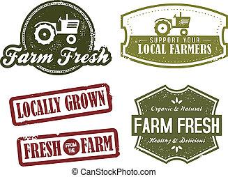型, 農業, 新しい 市場
