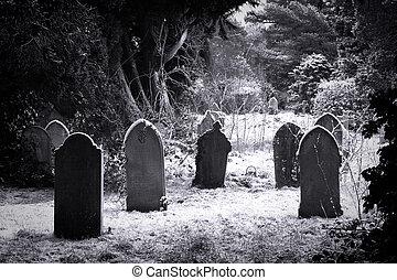 墓地, 雪, &