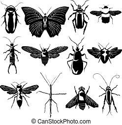 変化, ベクトル, シルエット, 昆虫