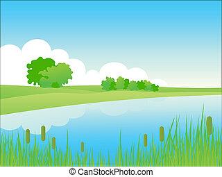 夏, 河岸, 景色。