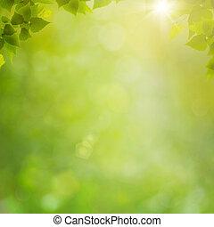 夏, 自然, 抽象的, 背景, bokeh, 森林, 群葉, 新たに