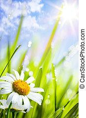 夏, 草, 自然, 背景, 花, ヒナギク