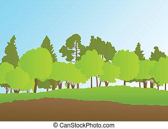夏, 風景, ベクトル, 森林, 背景