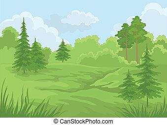 夏, 風景, 森林