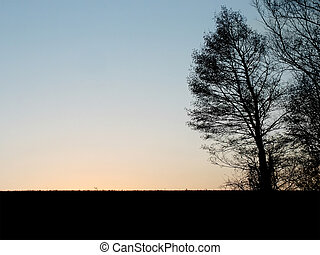 夕方, 牧草地