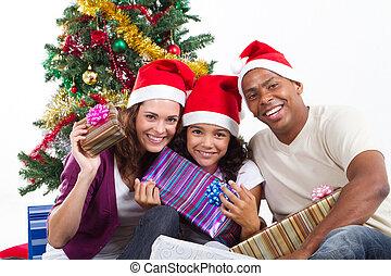 多人種である, 贈り物, クリスマス, 家族