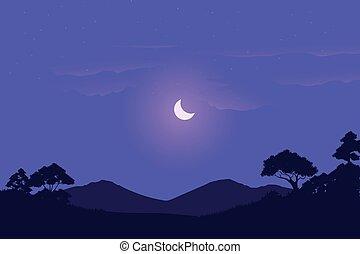 夜, アフリカ, 牧草地, 光景