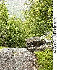 大きい, 山, rockfall, 道, 岩
