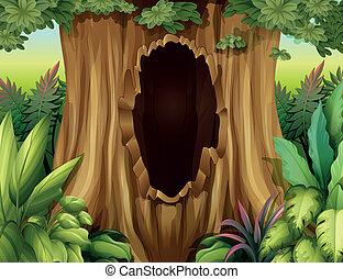 大きい, 穴, 木の幹