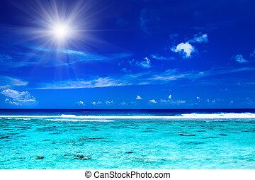 太陽, 上に, 海洋, トロピカル, 色, 活気に満ちた
