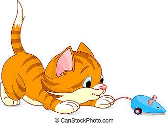 子ネコ, 遊び好きである