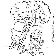 子供, 収穫する, 成果