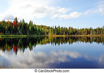 季節, 湖, 北, 秋