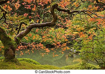 季節, 秋, 2, 庭の日本人
