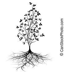 定着する, ベクトル, 木, 若い, 背景