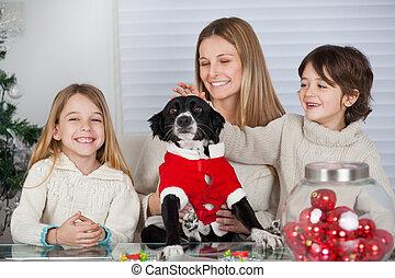 家族ペット, 犬, 家, の間, クリスマス