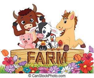 家畜, 庭, コレクション