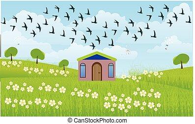 家, 光景, 農場